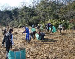 1月17日 湿地帯の保全活動