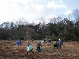 1月31日(金) 湿地帯保全活動 ボランティア募集!